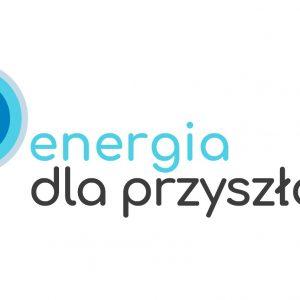 Program stażowy Energia dla przyszłości